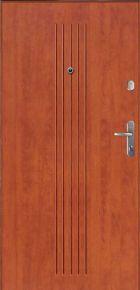 Drzwi Gerda WX10